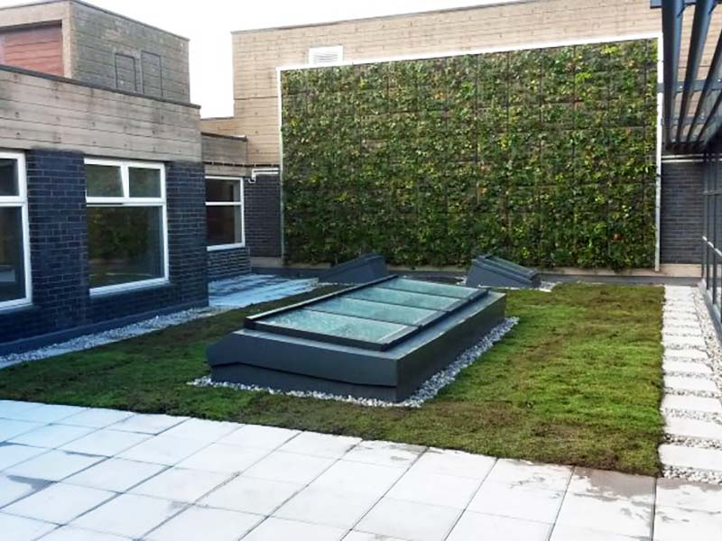 Green garden installled on building roof with grass wall